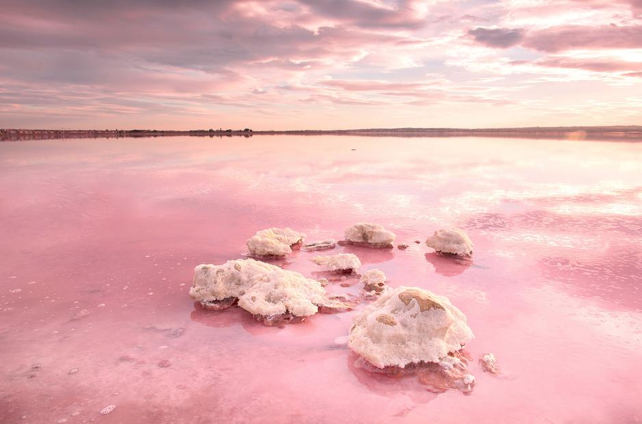 Lagune rose de Torrevieja